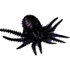 Spider Black With Suction Cup